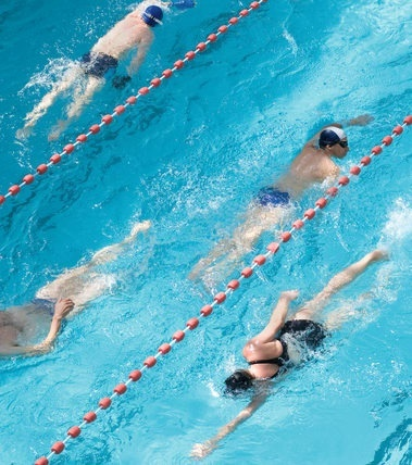 Performance Natation Adulte